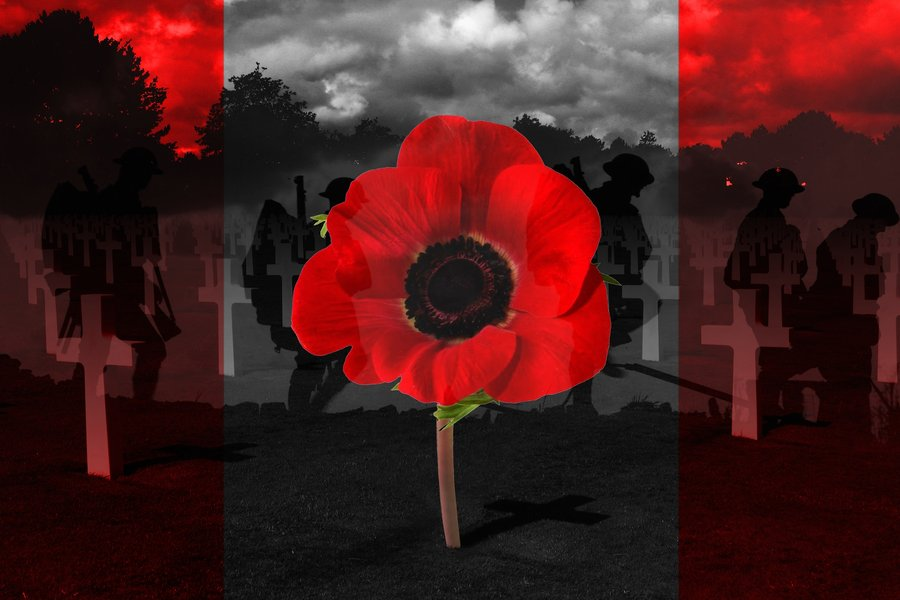 remembrance day 2010 by dagan12-d32mbsu